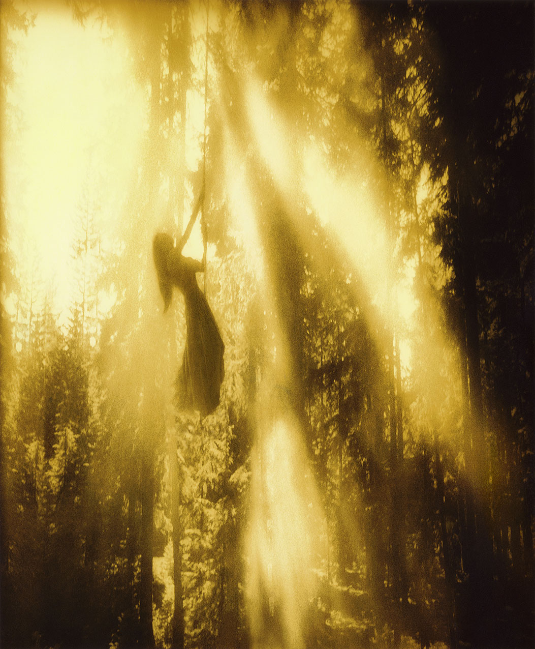 SunRay-Forest sharp0.3 1276px 08